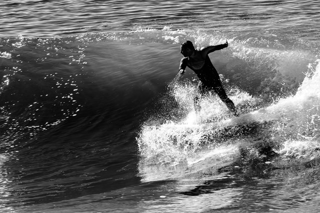 2014-1-Venice Surf1.jpg
