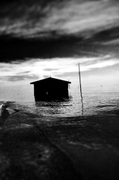 Shouse14.jpg