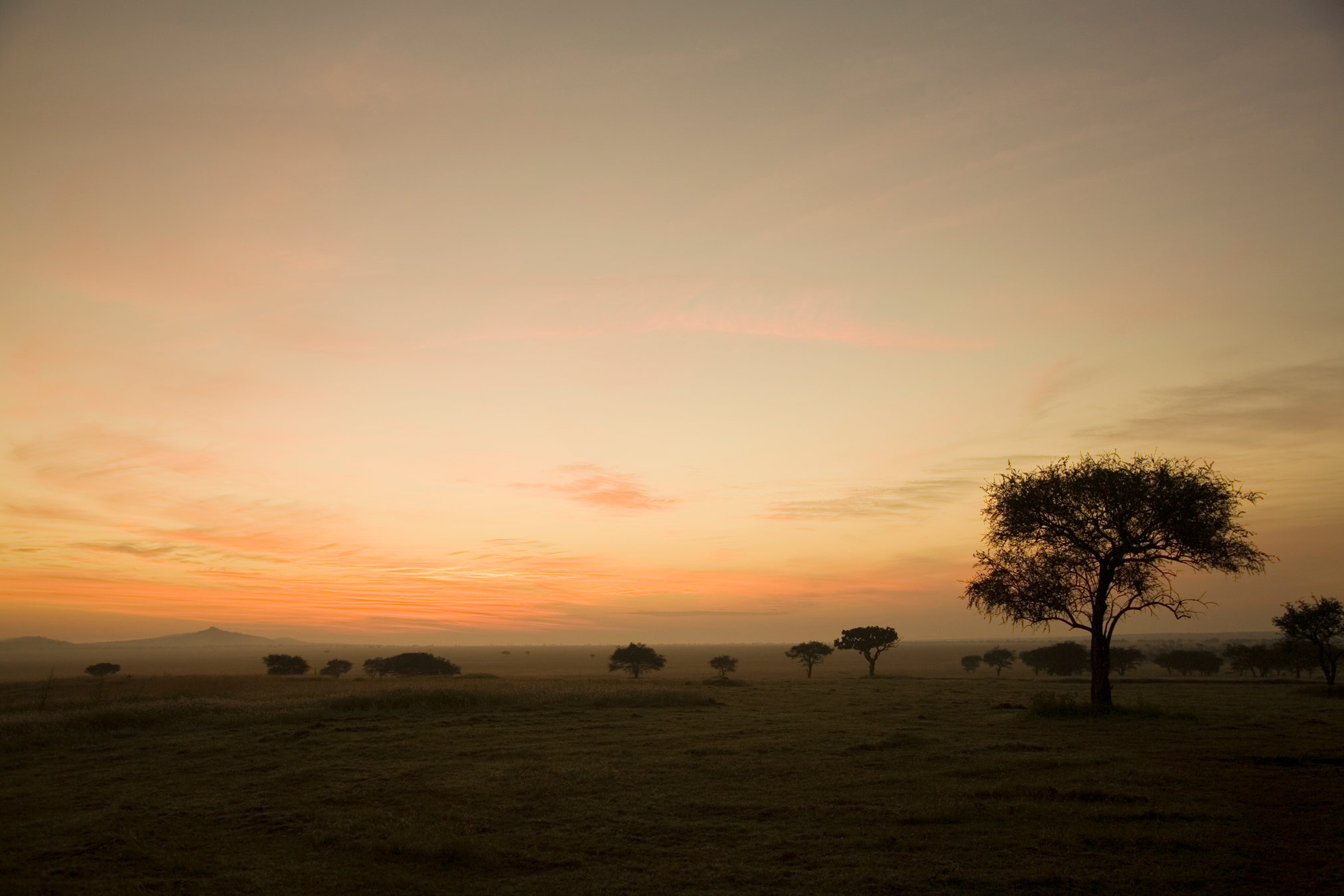 sunrise.tif