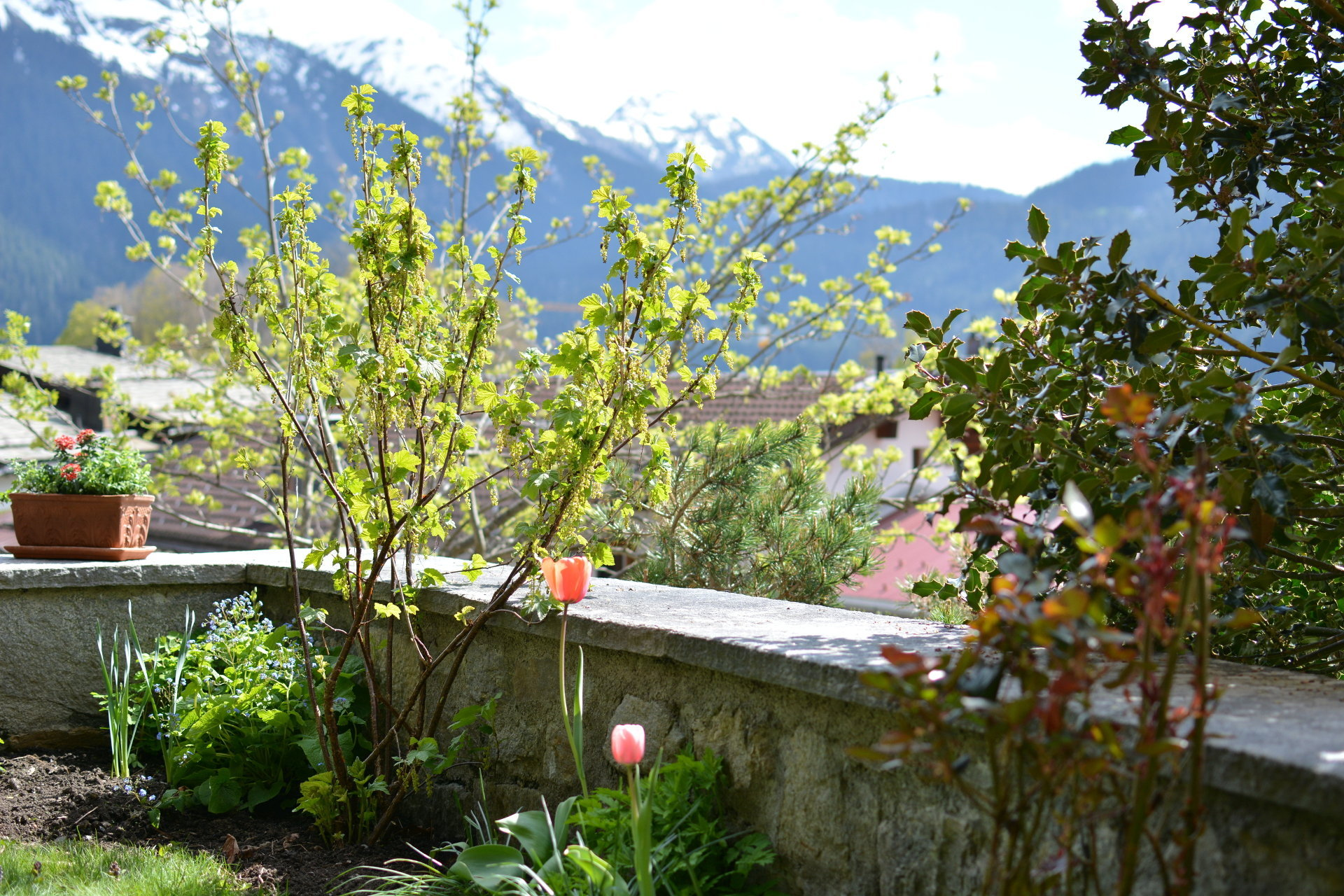 Chalet-Fuechsli-Klosters-Sommer-10.JPG