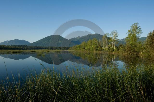 Landschaften_Copyright_548.jpg