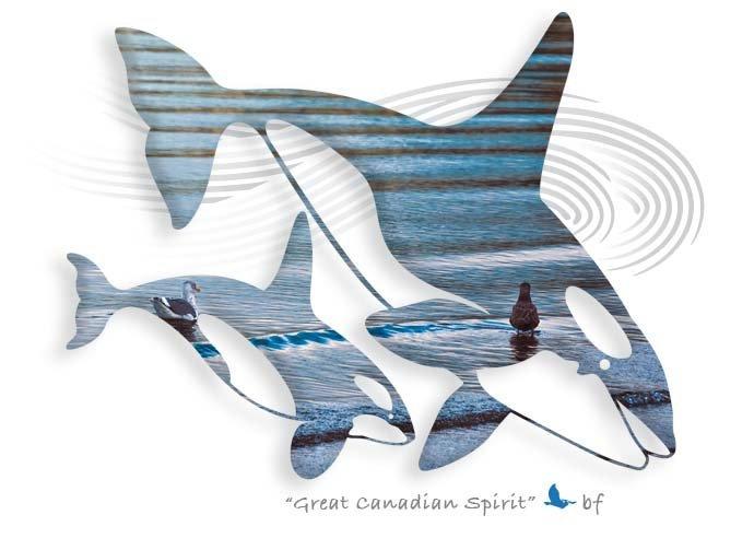 Whale-17.jpg