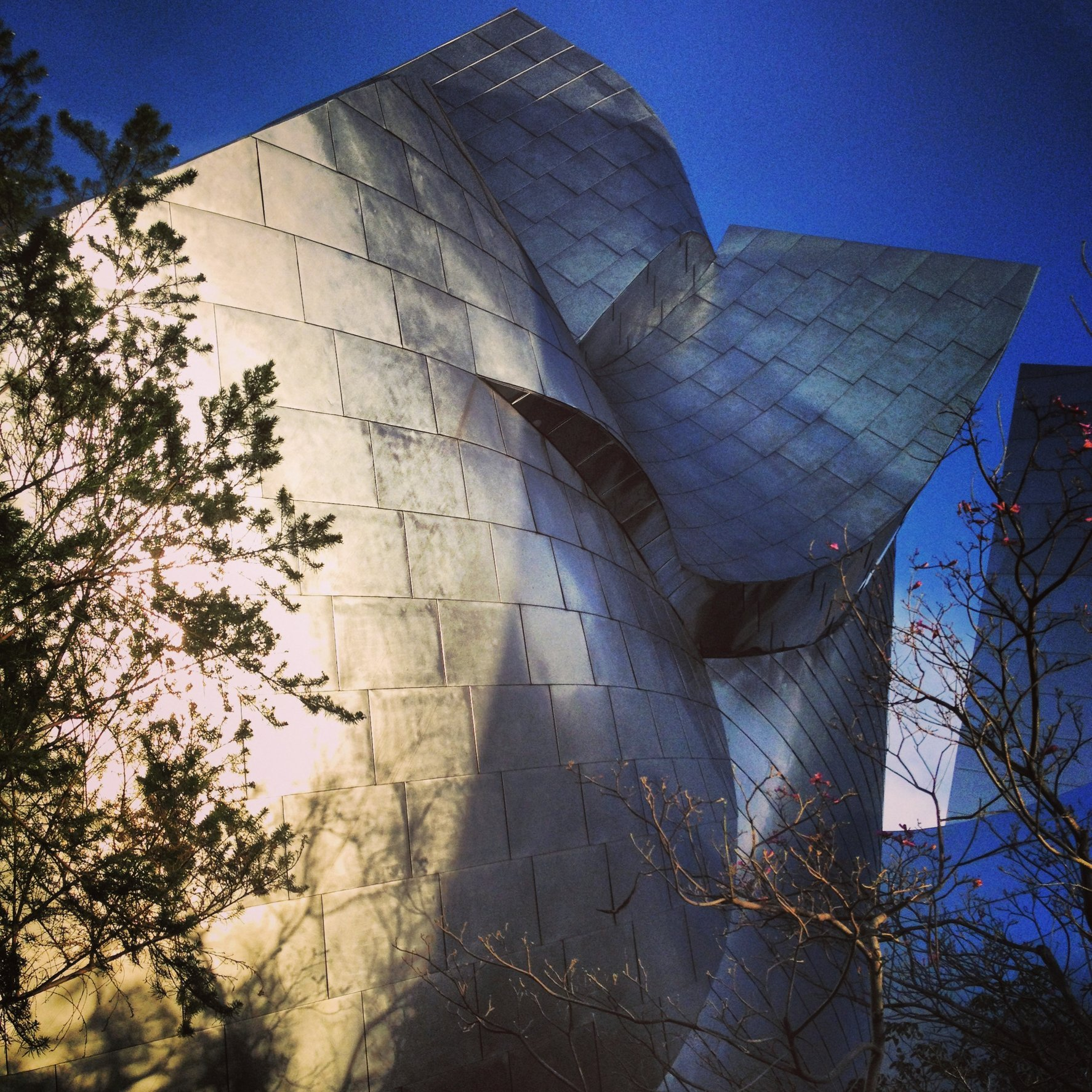 WALT DISNEY CONCERT HALL - BLUE 16