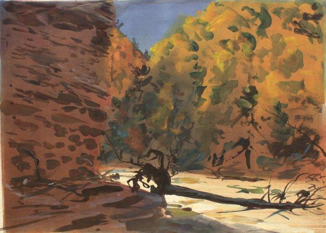 "Treman Gorge    22 x 29"""