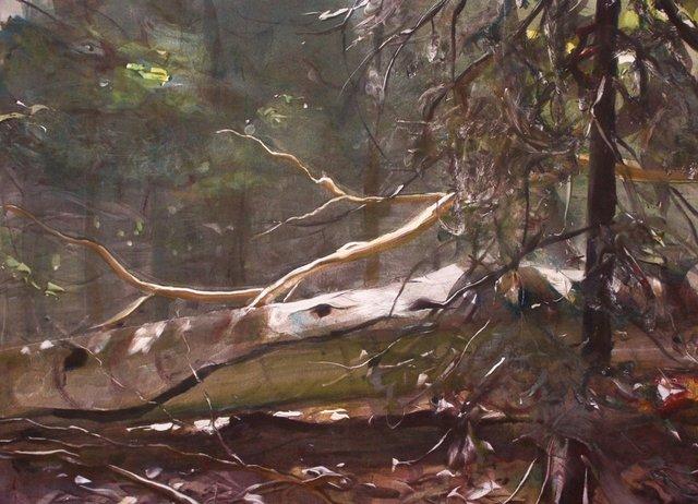 "Ithaca Woods  22 x 30"""