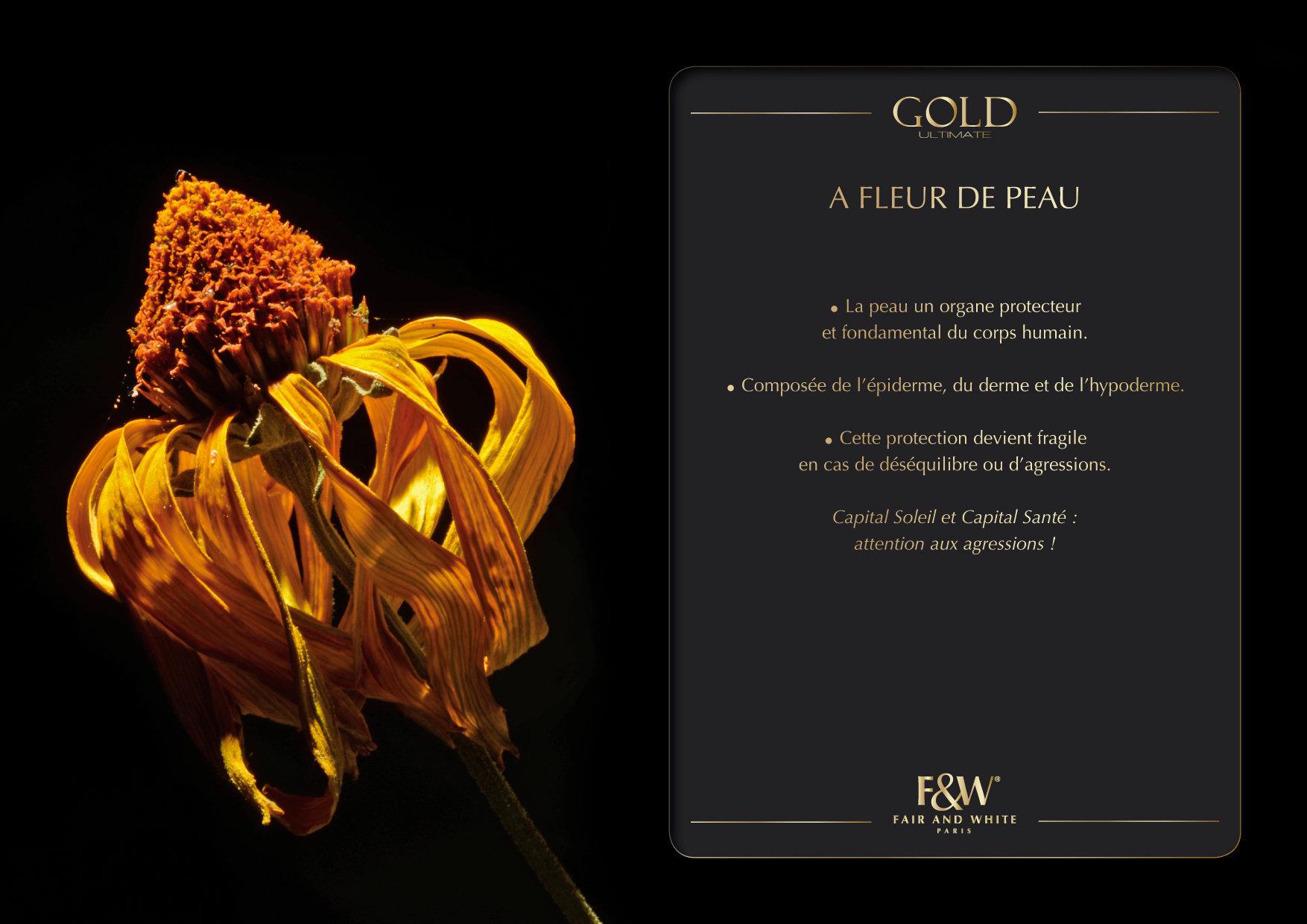 """<font color=""""#aaa7a6"""">Gold : présentation de la gamme (6/20).</font>"""