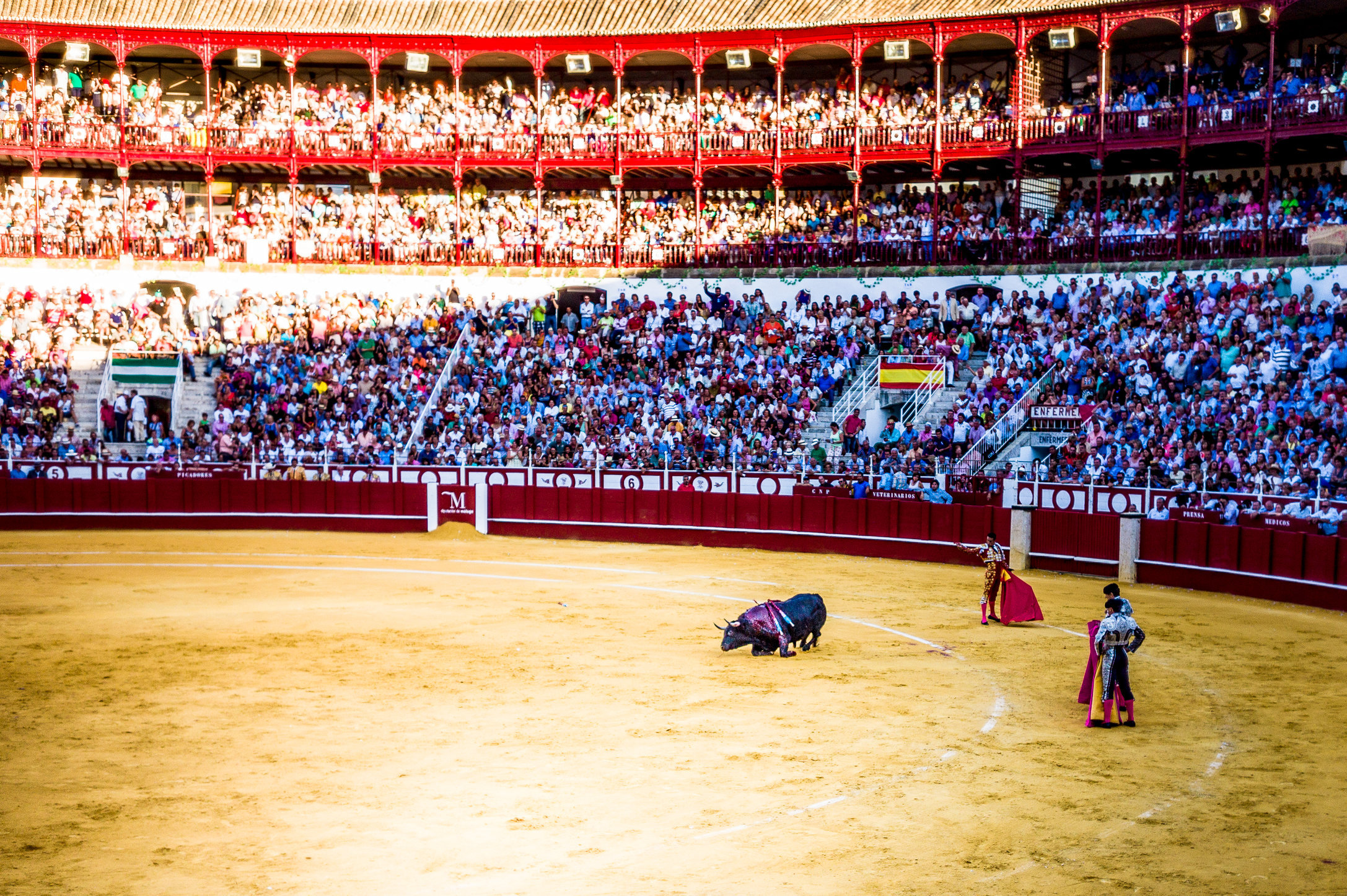 The Bullfight-106.jpg