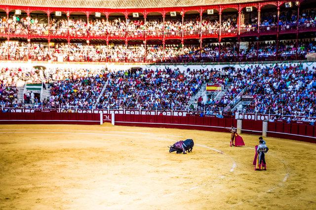 The Bullfight-106.jpg