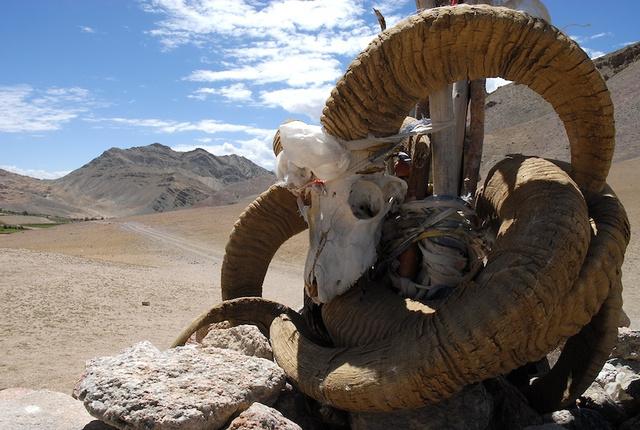 Ladakh_8.jpg