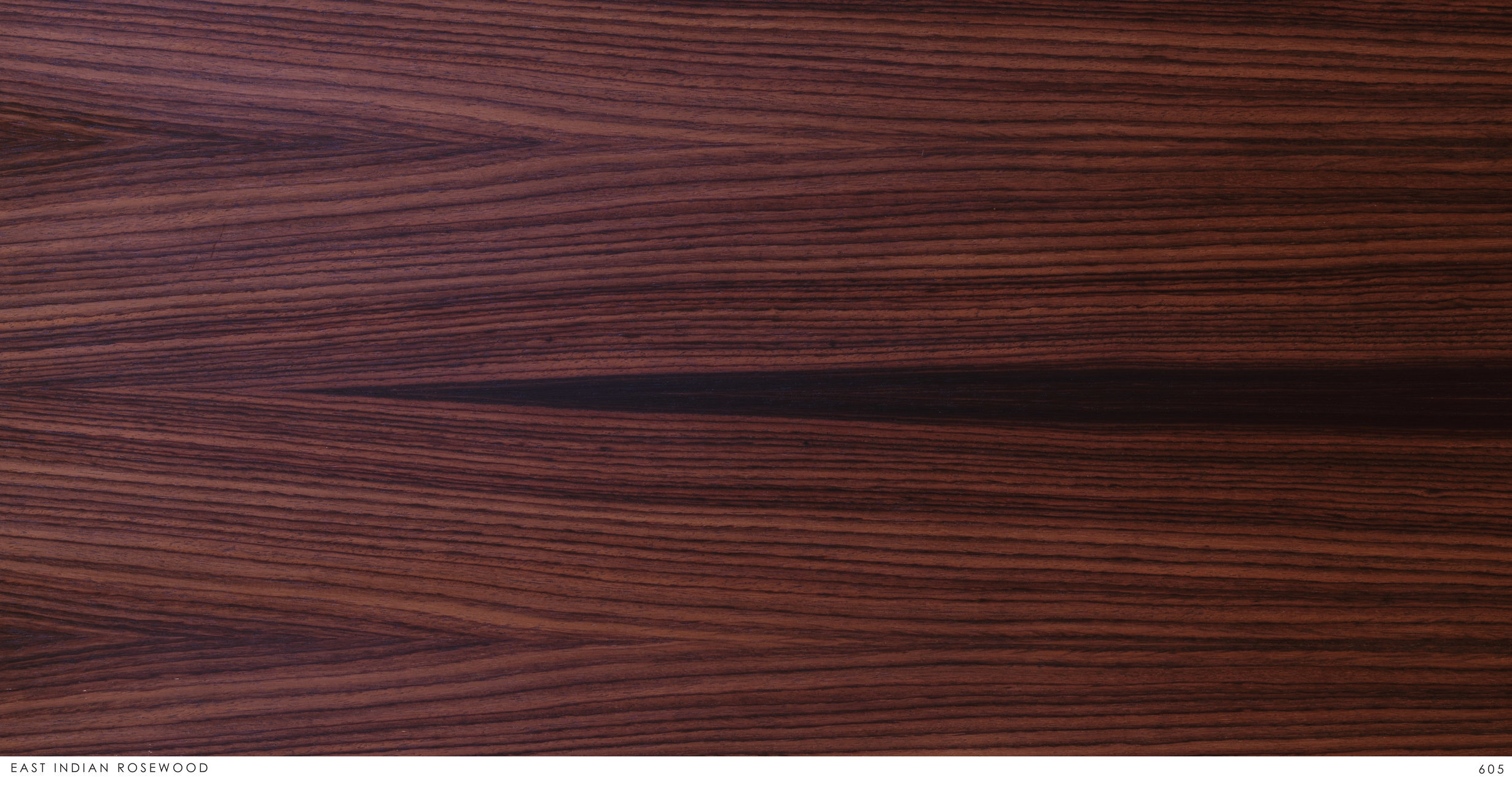 EASH INDIAN ROSEWOOD 605.jpg