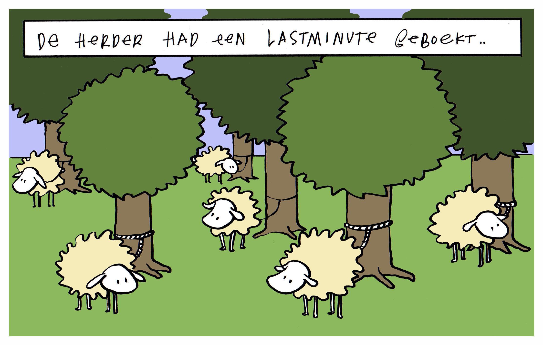 de herder en zijn lastminute.jpg
