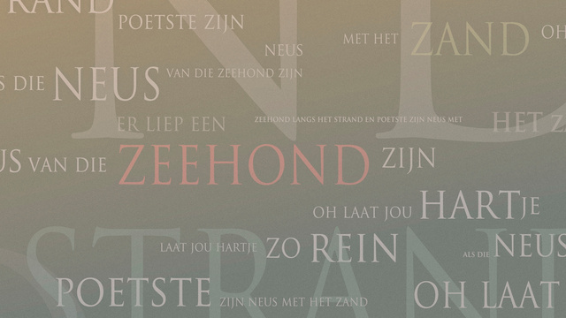 zeehond-web1920L.JPG