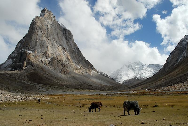 Ladakh_48.jpg