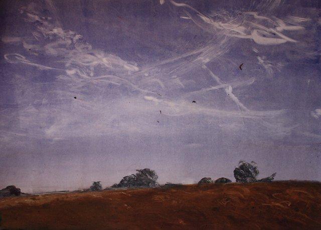 """Illinois- Birds, Wind   22 x 29"""""""