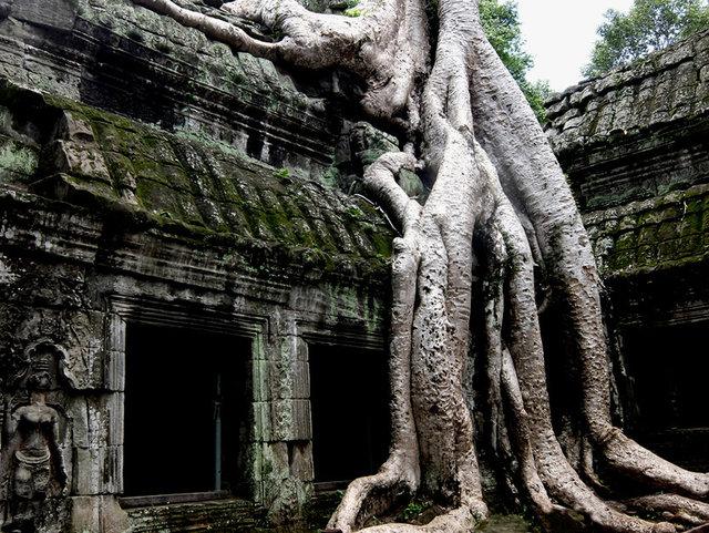 ankor, cambodia