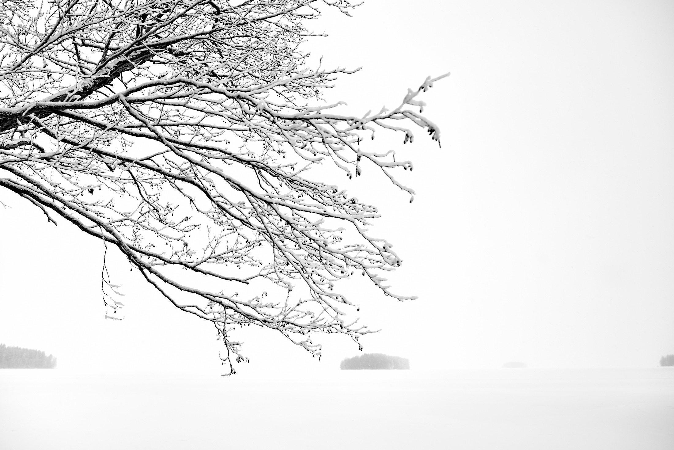 Snow II - Vanajanvesi