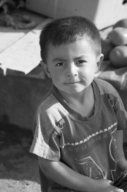 The Uyghurs, Western China