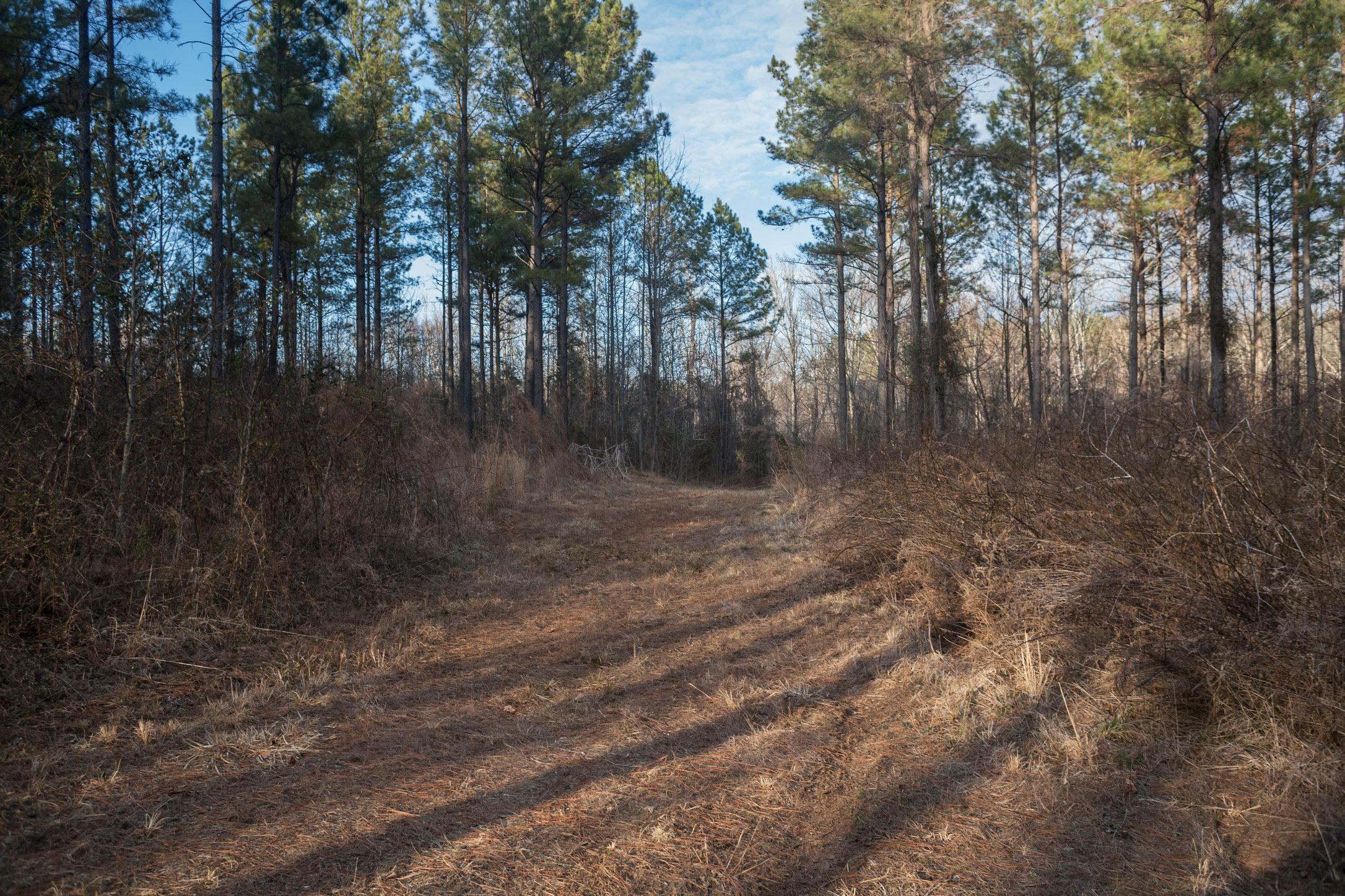 Warrenton, Warren County, North Carolina