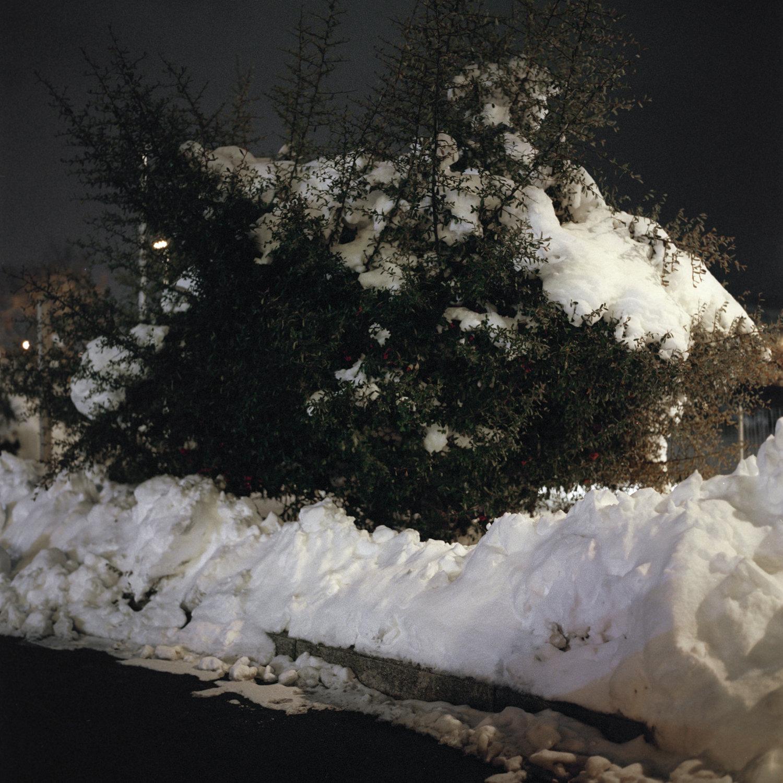 #01 L'Aquila, febbraio 2012