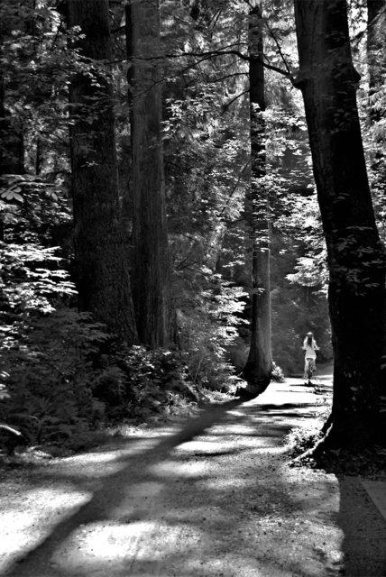 Stanley park road 12.jpg