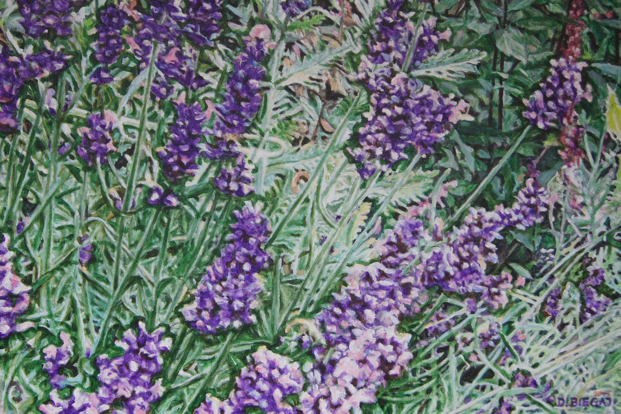 Garden 1 61x91,5 akryl płótno 2015