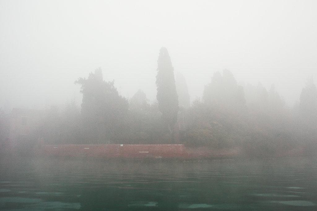 Neverland-9.jpg