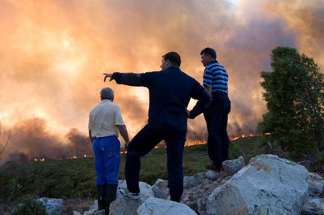 Bos Branden Spanje-04
