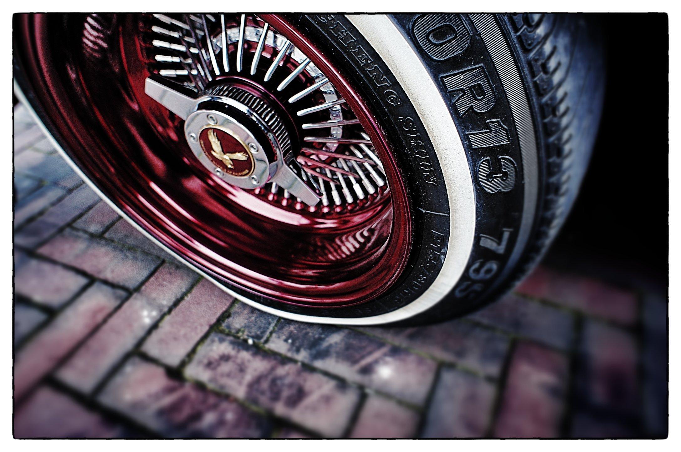 DSC00488_Snapseed.jpg