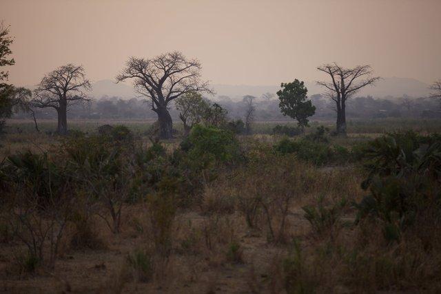 Malawi_003.jpg