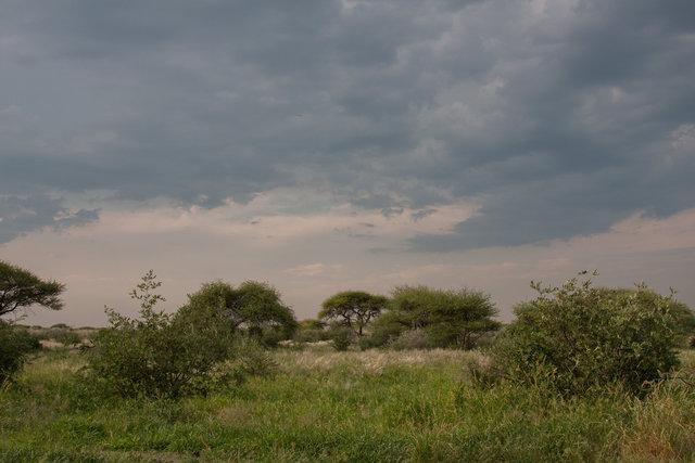 Central Klahari National Park