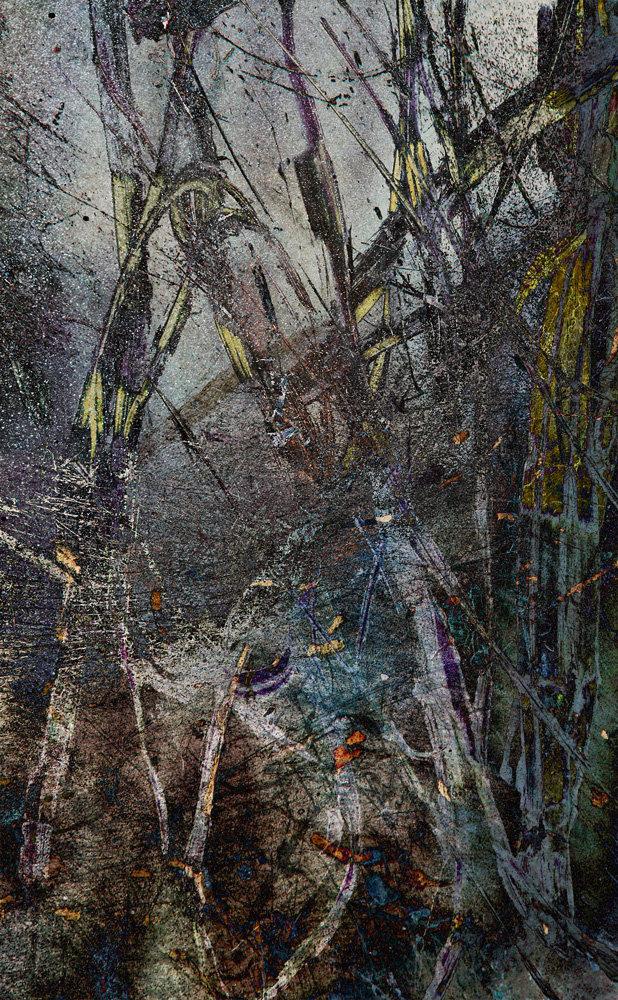 Żdżbła I, vigrafia 152, 77x57
