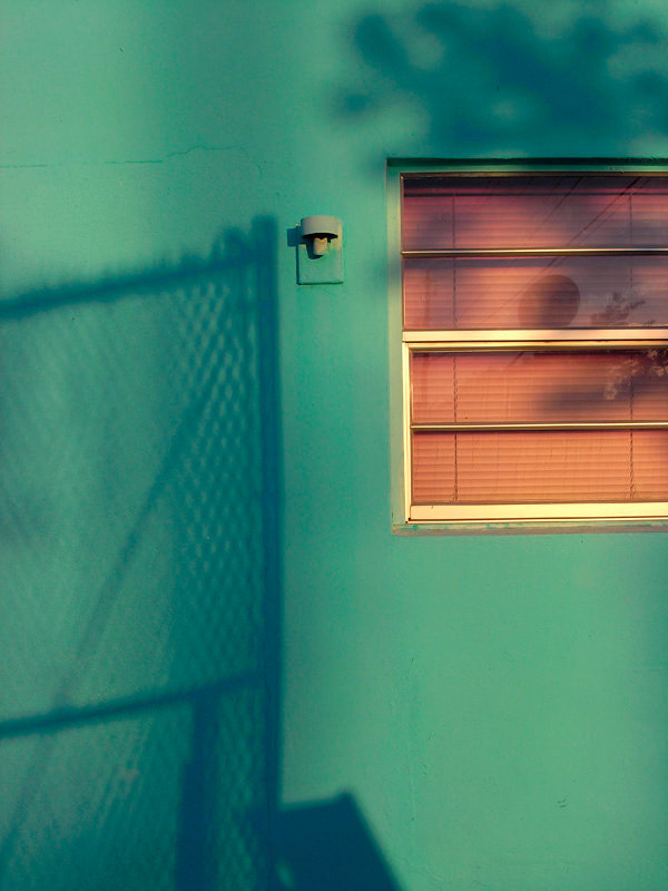 shadows_2010.jpg