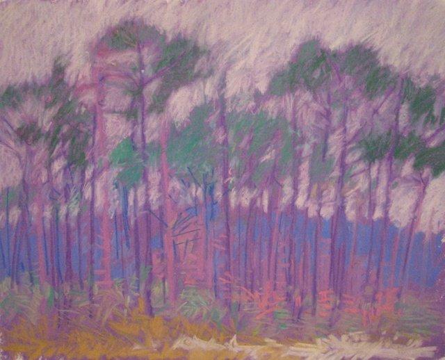 Pines in Gulf Breeze 1