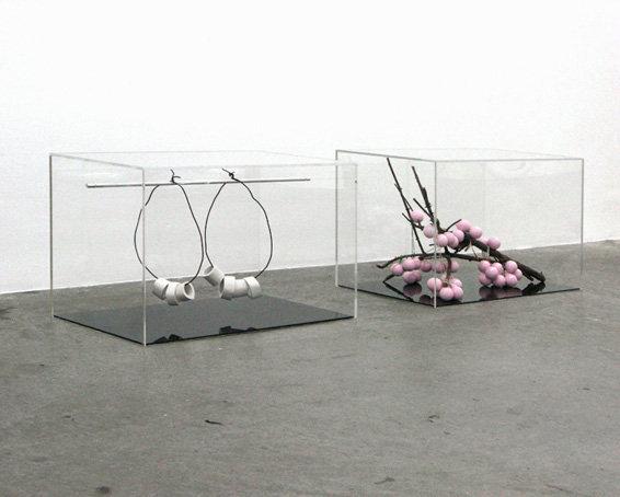 Paul-Casaer-Bones-CherryBlossom-VLR.jpg
