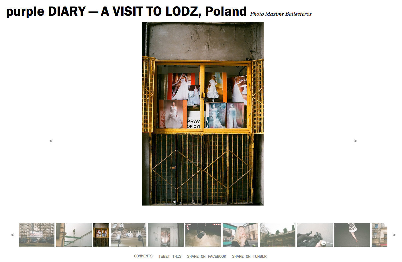 purple DIARY   A VISIT TO LODZ  Poland.jpg