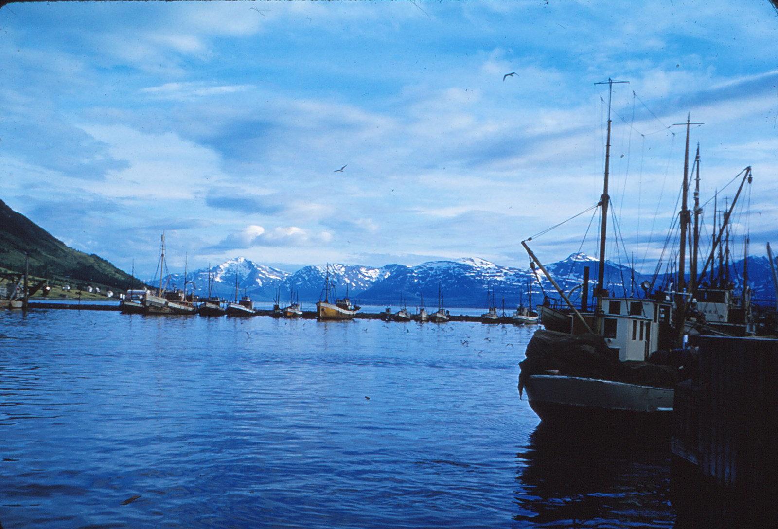 861 (9) Haven Tromsø. avond