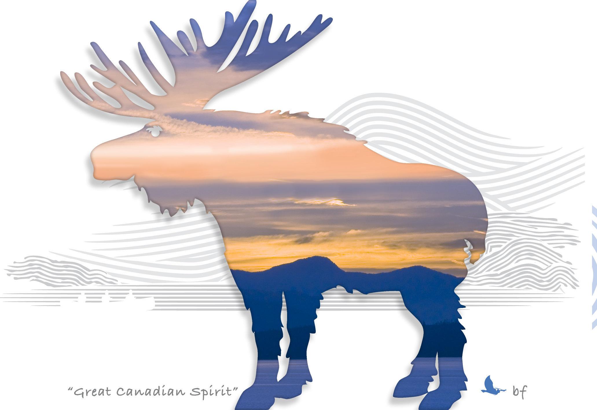 Moose-03.jpg