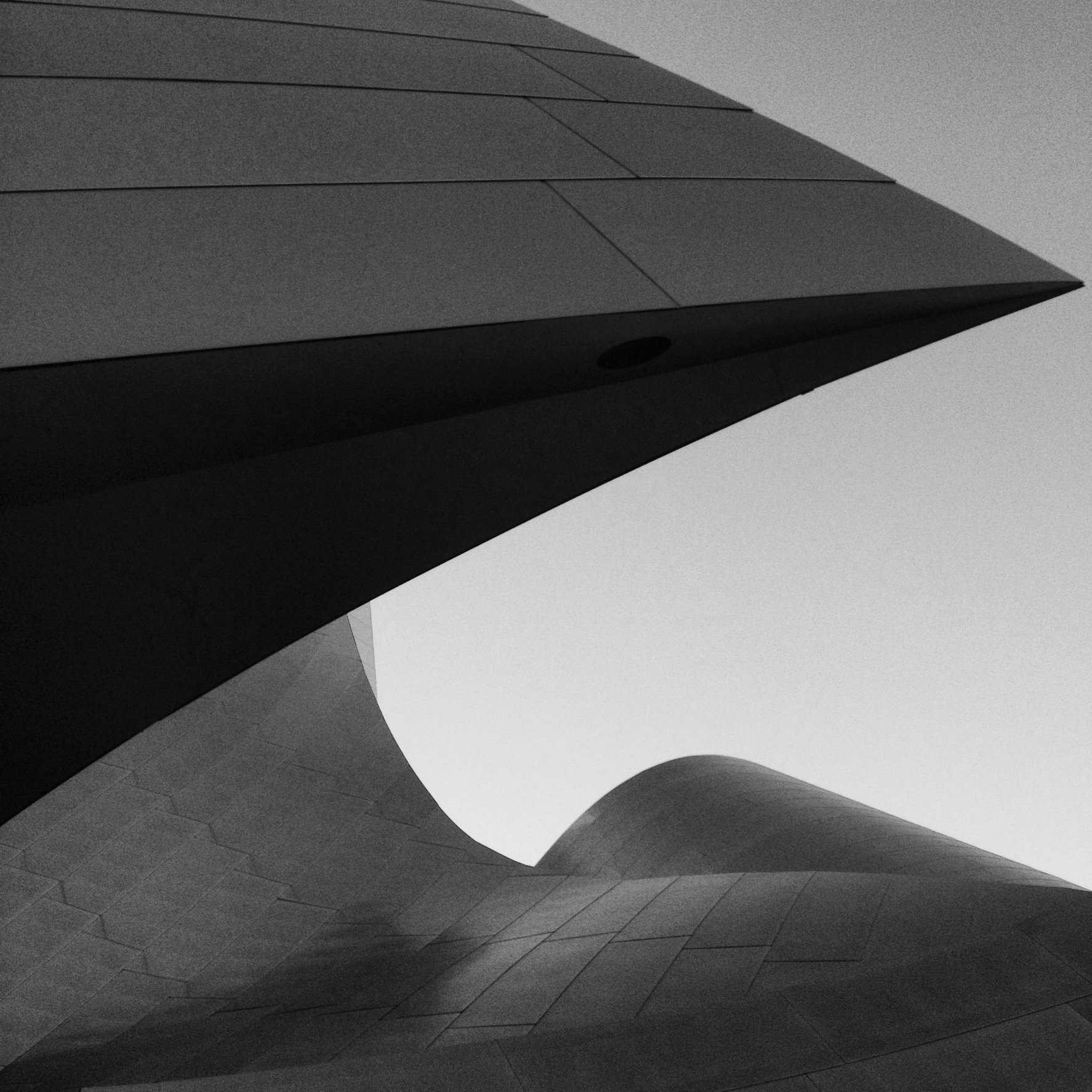 WALT DISNEY CONCERT HALL - B&W 10