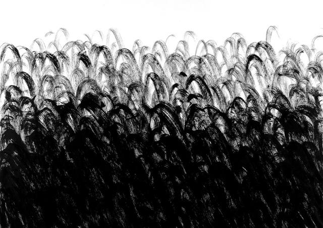 Carbon Black #1, 2011.
