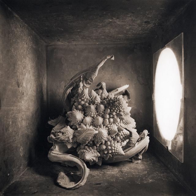 Cauliflower, c 2000
