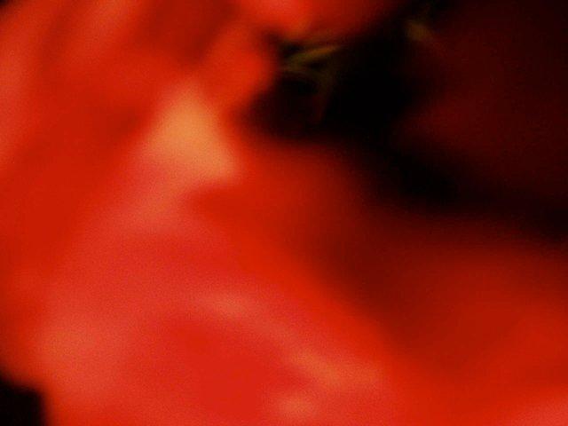 geheimnisvoll 4 - 2005 - 60 x 80 cm