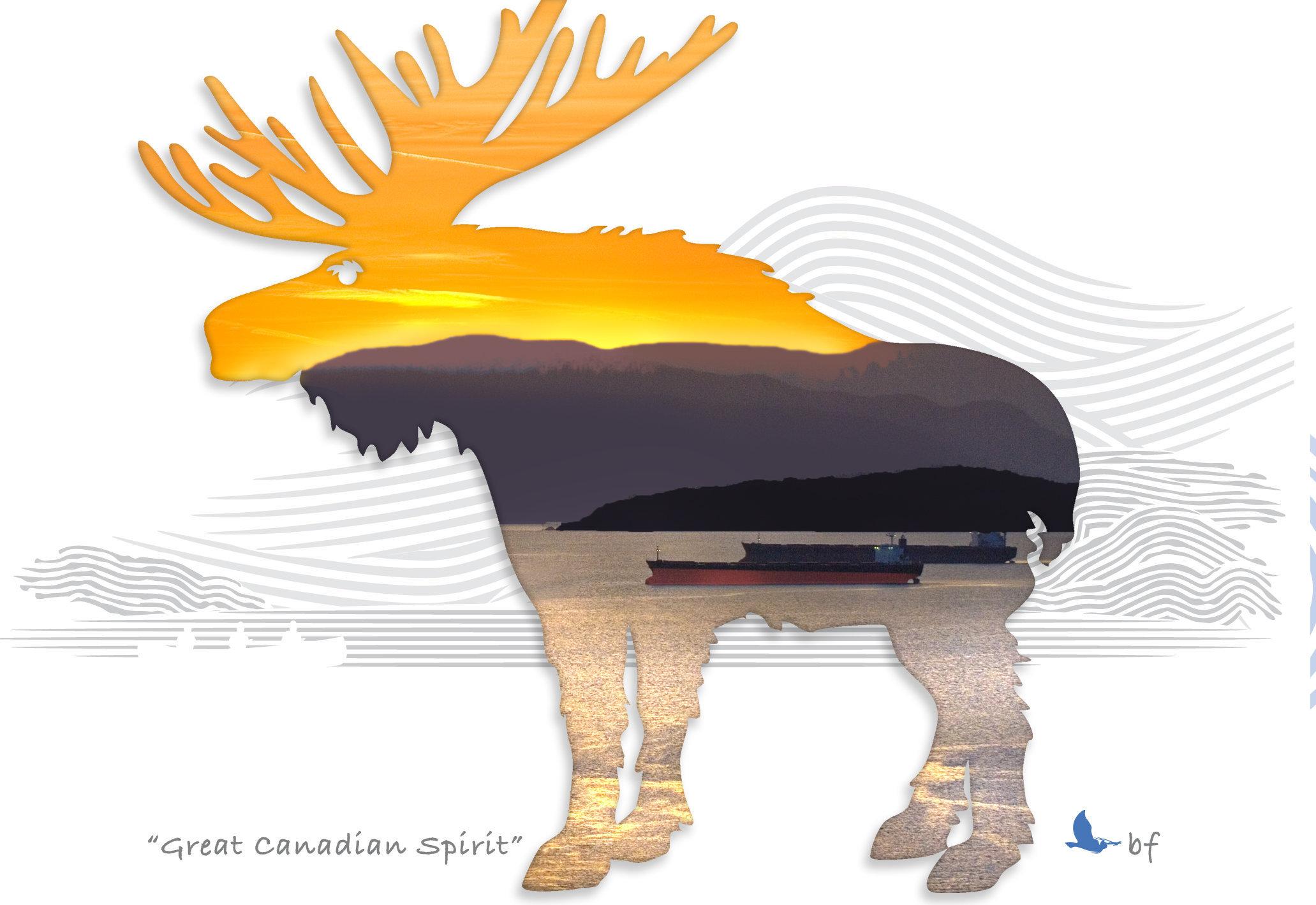 Moose-05.jpg