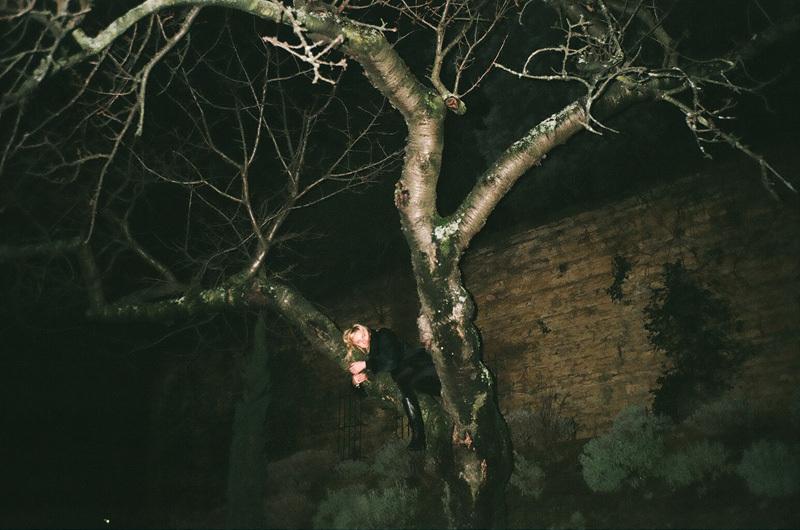 jen dans un arbre.jpg
