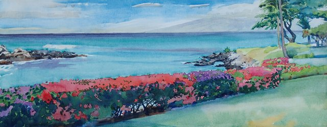 Napili Point Maui, Bougainvillias