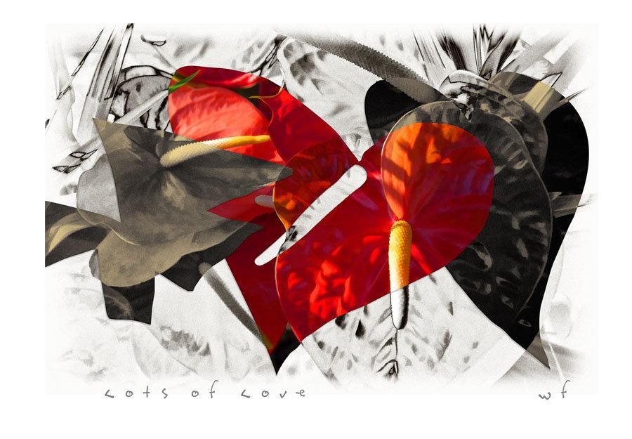 Hearts-0 b5.jpg