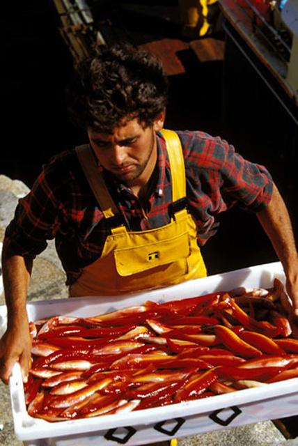 De retour de pêche, Camarinas