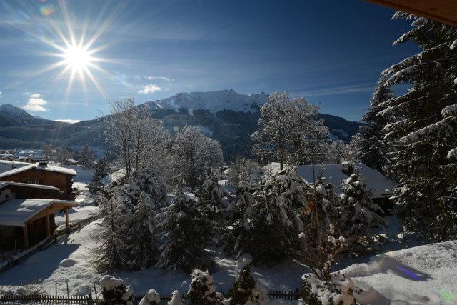 Chalet-Fuechsli-Klosters-Winter-12.JPG