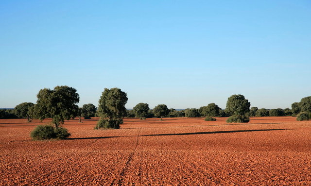 la mancha - rode aarde