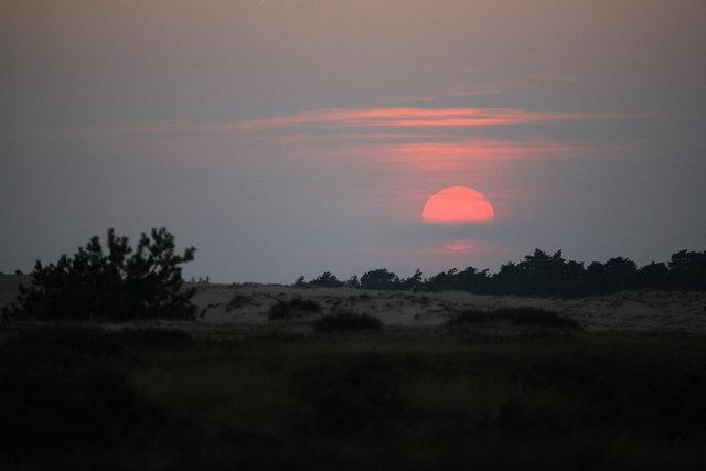 de hoge veluwe - zonsondergang