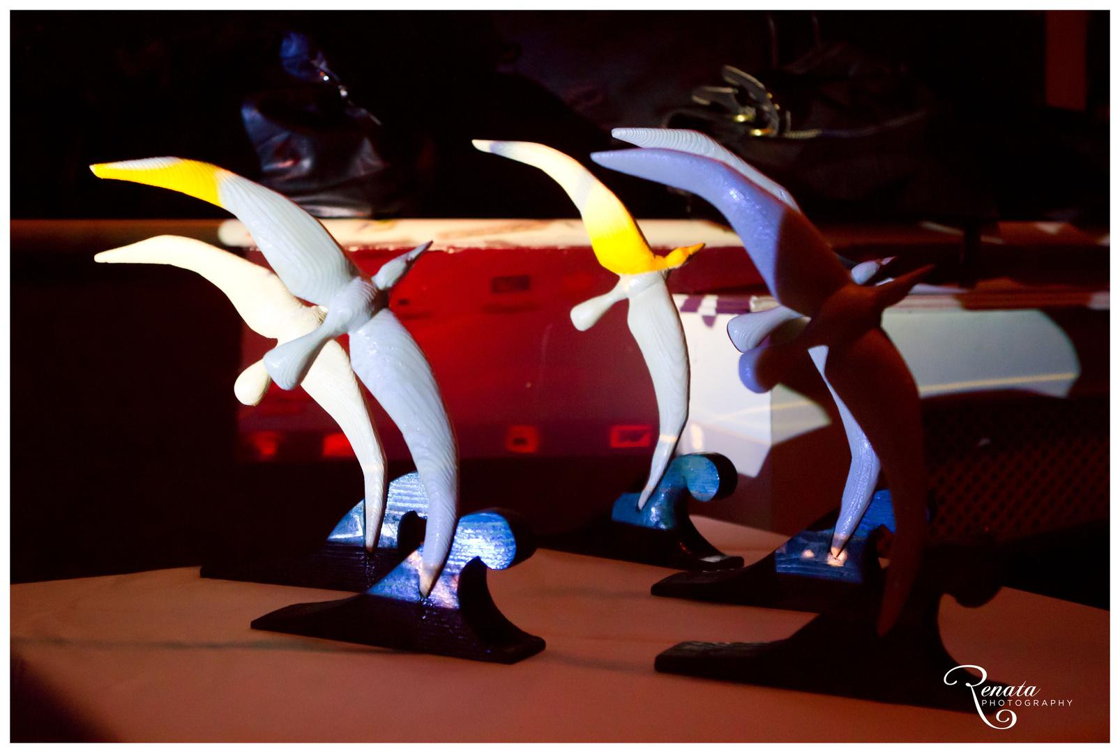 000_Balto paukscio skrydis2012.jpg